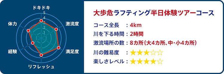 大歩危コース レーダーチャート